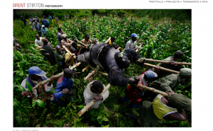 brentstirton.com Screen Shot